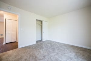 view of closet in carpeted room